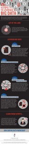 Infographic: 4 Steps to Leverage Big Data by Pinnacle Business Systems