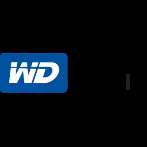 Western Digital, Pinnacle Partner